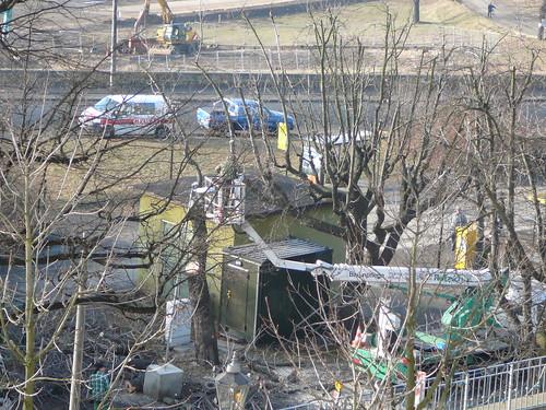 Baumfällarbeiten an der Bautzner Straße (10)