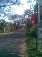 Image020 (3) (drsreejith1981) Tags: kerala kumarakom rurallife