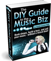DIY Guide to Music Biz