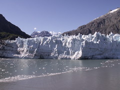 Glacier Bay photo