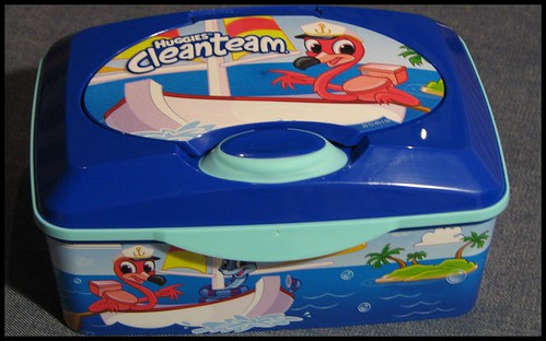 Cleanteam Flushable Wipes