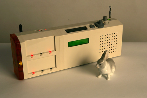 Rabbit infront of the radio