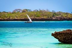 Sailing around Chale Island