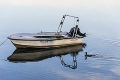 EMBARCACIÓN_ (lourdestorreira) Tags: embarcación marítimo barca pueblo pesquero faunamarina avesacuaticas costa galicia