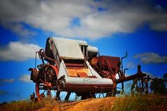 Sunshine...harvester (holly hop) Tags: wagon farm abandoned rural harvester sunshine rusty rustyandcrusty redrust machinery farmmachinery sliderssunday postprocessing bluesky rustic hvmckay ballarat winnower