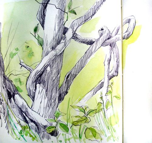 May 16 sketchcrawl