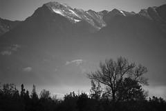 Mission Mountains (drburtoni) Tags: mountains buffalo montana bison nationalbisonrange missionmountains theemptyplaces