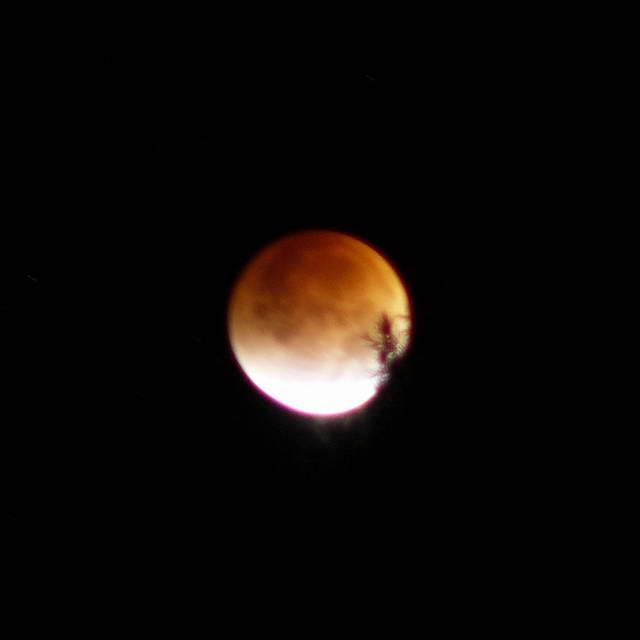 2. Lunar eclipse, 2007-08-28 09:46:34 UT (photographer: Michael McNeil)