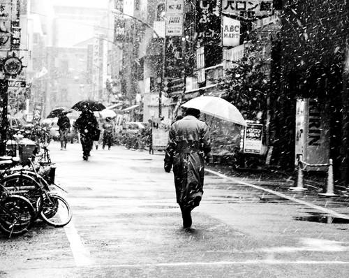 umbrellas in the snow-4
