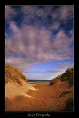 By Gods Hand in Explore (DDA / Deljen Digital Art) Tags: shadow sea england sky seascape beach nature grass clouds landscape sand dunes fingers northumberland buk blyth