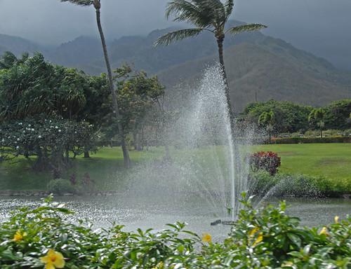 Maui 116