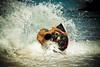kua bay022 (nia-briana) Tags: park beach hawaii bay day state sunny kai bigisland kona kailua kua kekaha micahm sandsliding niabriana