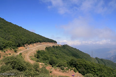 A Road To The Clouds; Iran, Semnan Province, Abr Forest (Aryobarzan) Tags: misty iran cloudy cloudforest  semnan   aryo   shahrood  sigma1770mm canoneos400d shahrud   shahroud  aryobarzan abrforest   abrvillage
