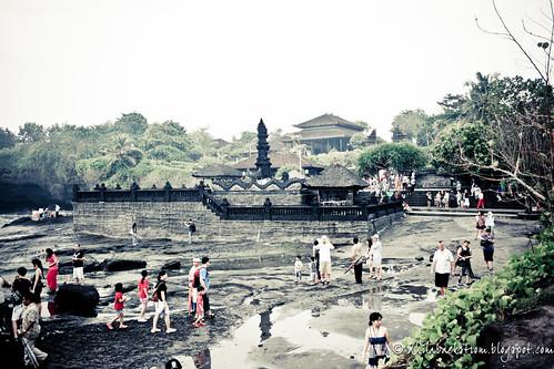 031610_Indo-204