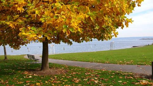 11 華盛頓湖