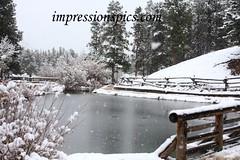 Snowy Trail 2