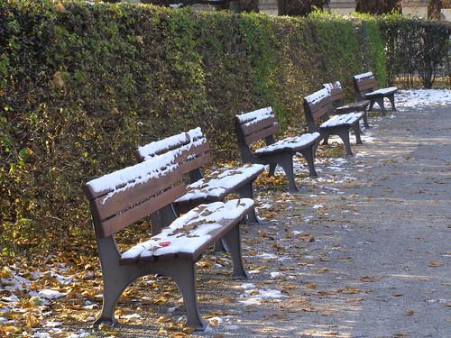 El clima influye en el amor (PB180064)