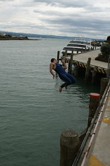 (sersen) Tags: newzealand 2007 hawkesbay