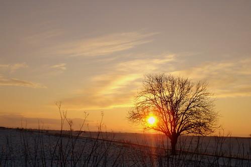 El sol sale para todos...