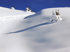 Virgin Slope (Firenzesca) Tags: winter shadow italy white mountain snow ski tree skiing cross ombra neve whitechristmas albero montagna sci dolomiti altabadia themoulinrouge valdifassa flickrdiamond platinumphotography theperfectphotographer goldstaraward buriedtree passodisanpellegrino