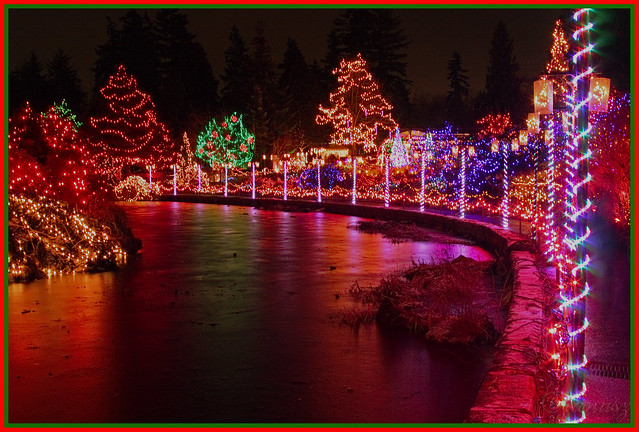 "Christmas in Vancouver - ""Festival of Lights""  Vandusen Garden"