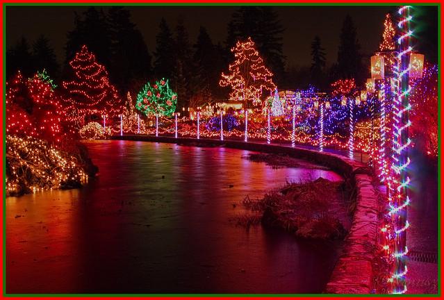 """Christmas in Vancouver - """"Festival of Lights""""  Vandusen Garden"""