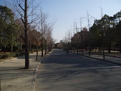 大阪城公園外堀-冬ver