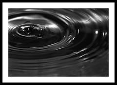 Ripple (~~Tone~~) Tags: bw macro water closeup canon eos ripple tony cs3 mangan kood 400d