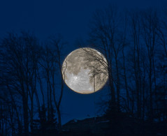 Hopfen_3383 (Michael Dawes) Tags: camera longexposure moon sunrise canon germany geotagged eos is europe exposure nightshot shots country nightshots usm 1785mm efs hopfen bavarian dawes f456 topshots canonefs1785mmf456isusm 40d megashot canoneos40d michaeldawes mytopshots themostbeautifulplacesineurope geo:lat=47605989 geo:lon=10682315