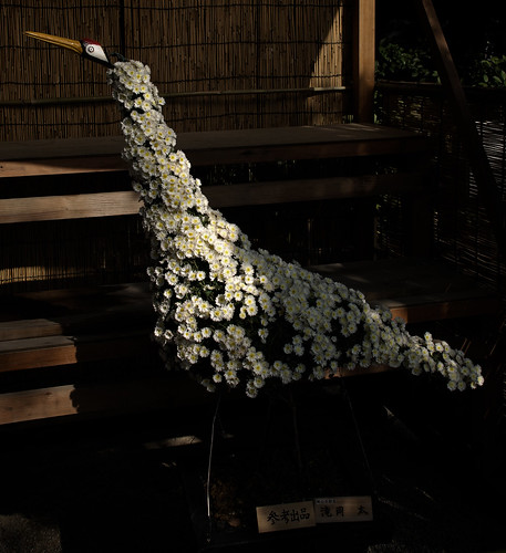 El arte de Koraku-en. Okayama. Por Japón (8)