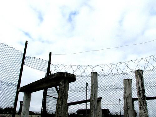 2008-02-11_Robben Island 056