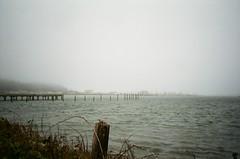 Foggy (timichango) Tags: oregon olympusxa roadtrip2006