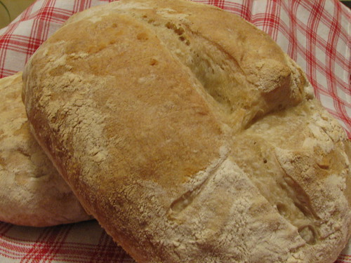 Daring Bakers - Feb Challenge - French Bread (2)
