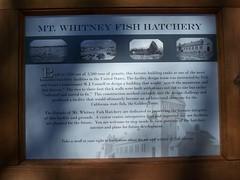 mt whitney fish hatchery nov 2007 (happy trails to you...) Tags: 395 easternsierra mtwhitneyfishhatchery sierravisions