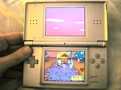 Nintendo DS + Animal Crossing
