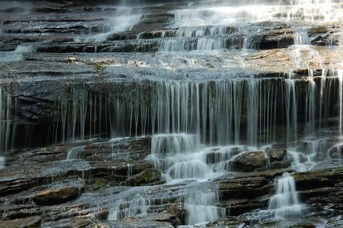 Pearson Falls Detail