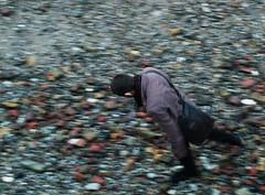 walker (Martino's doodles) Tags: autumn guy london beach thames walking delete2 colours untagged save3 delete3 save7 save8 pebbles delete delete4 save save2 save9 save4 save5 save10 save6 savedbythedeltemeuncensoredgroup fa5014 virela gardela virela2 gardela2 virela3 gardela3 virela4 virela5 virela6 virela7 gardela4 virela8 virela9 virela10