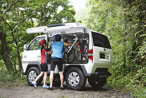 31993 VW California Van Not In NA