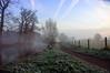 Het was weer mooi (buteijn) Tags: mist holland misty fog river landscape haze nevel bravo utrecht foggy nederland landschap rhijnauwen krommerijn bunnik rivier aplusphoto