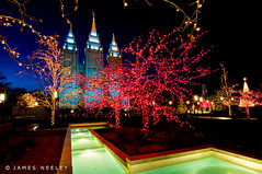 Joy of the Season (James Neeley) Tags: holiday temple utah holidays christmaslights saltlakecity templesquare saltlaketemple mywinners jamesneeley