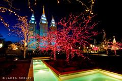 Joy of the Season (James Neeley) Tags: holiday temple utah holidays christmaslights saltlakecity templesquare saltlaketemple mywinners jamesneeley