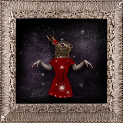 rabbit flying stars dress