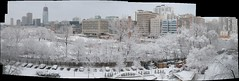 Eglinton-Davisville Snowstorm Aftermath Panorama (Tony Lea) Tags: winter autostitch panorama snow toronto davisville tony eglinton lea anthony weatherphotography midtowntoronto tonylea anthonylea