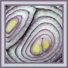 Red onion (tina negus) Tags: red abstract square minimal layers onion section concentric 10faves 35faves 25faves coolestphotographers