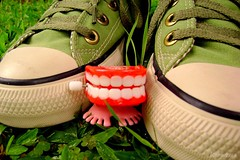 Say 'cheese'! (Honey Pie!) Tags: verde green shoes converse allstar chucktaylor toyland tnis poulain supershot dentadura colorphotoaward cybershotdscs650