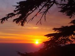 4mcleod ganj011 (ong richard) Tags: sunset india ganj mcleod