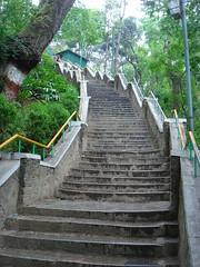 stair (jk10976) Tags: nepal fab green beautiful wonderful amazing asia stair perspective onlythebestare jk976 goldstaraward firsththeearth fabphoto alarecherchedutempperdu