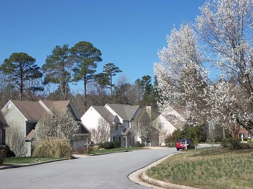 Linville Ridge, Cary, NC 021