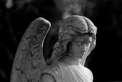 Angel (8#X) Tags: bw sculpture graveyard germany munich münchen geotagged bayern deutschland bavaria blackwhite europa europe aficionados nohdr 8x k10d pentaxk10d tamronaf18250mmf3563diiildasphericalifmacro geo:lat=4817814 geo:lon=11459345