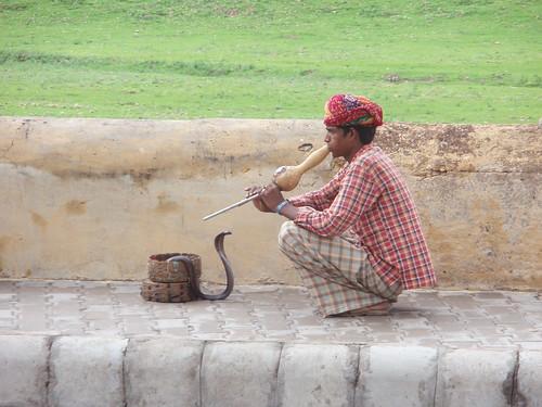 Encantador de serpientes en Jaipur, India